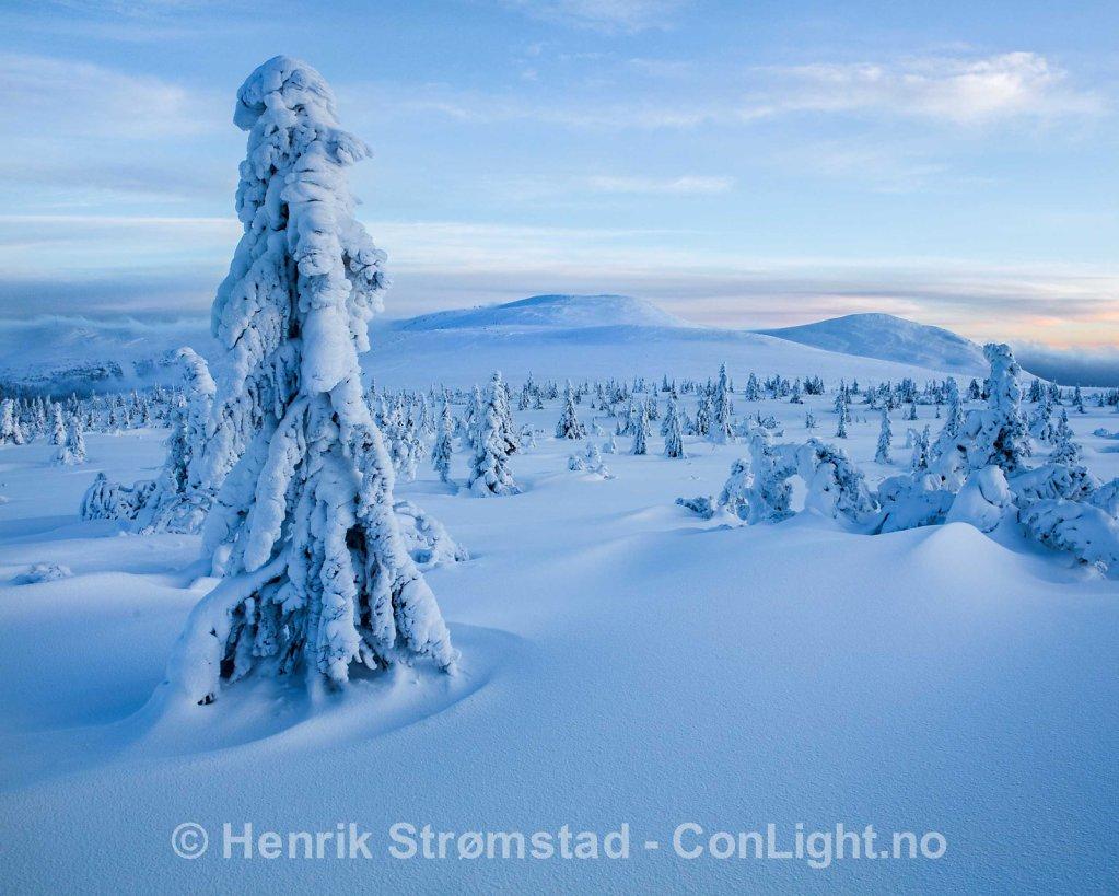 Winter Trysil, Norway 011