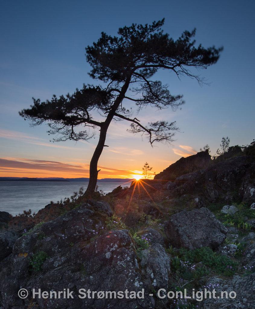 150523-Oslofjorden-0196.jpg