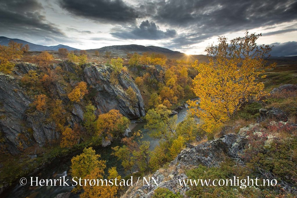 130913-Rondane-0022.jpg